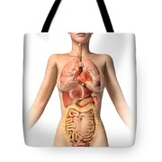 Anatomy Of Female Body With Internal Tote Bag by Leonello Calvetti