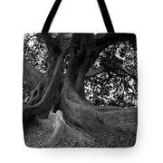 Ancestor Tote Bag by Amanda Barcon