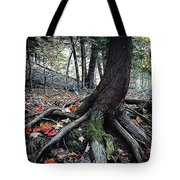 Ancient Root Tote Bag by Natasha Marco