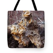 Ancient Warrior Tote Bag by Omaste Witkowski