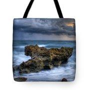 Angry Tote Bag by Debra and Dave Vanderlaan