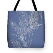 Anisogonium Lineolatum Tote Bag by Aged Pixel