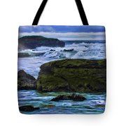 Ano Nuevo Seagull Tote Bag by Blake Richards