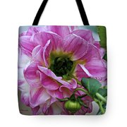Another Point Of View Tote Bag by Jeanette C Landstrom