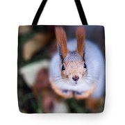 Anyting To Bite - Featured 3 Tote Bag by Alexander Senin