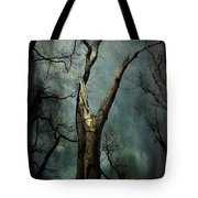 Appeal To The Sky Tote Bag by Cynthia Lassiter