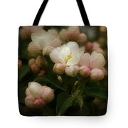 Apple Blossom Time Tote Bag by Mary Machare