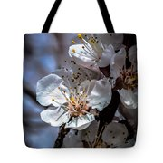 Apple Blossoms Tote Bag by Robert Bales