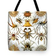 Arachnida Tote Bag by Georgia Fowler
