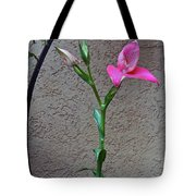 Arcs Of An Orchid Tote Bag by Byron Varvarigos