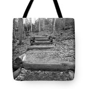 Arethusa Falls Mountain Trail Tote Bag by Catherine Reusch  Daley