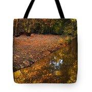 Arizona Autumn Reflections Tote Bag by Mike  Dawson