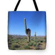 Arizona Is Number One Tote Bag by Kathy McClure