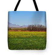 Arizona Spring Tote Bag by Methune Hively