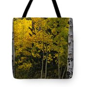 Aspen Light Tote Bag by Dave Dilli