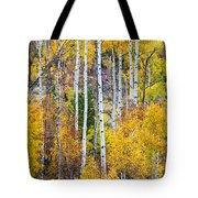 Aspen Tree Magic Tote Bag by James BO  Insogna