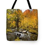 Aspens At Bishop Creek Tote Bag by Cat Connor