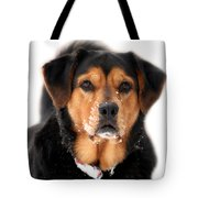 Attentive Labrador Dog Tote Bag by Christina Rollo