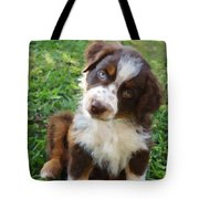 Aussie Double Trouble Tote Bag by Kenny Francis