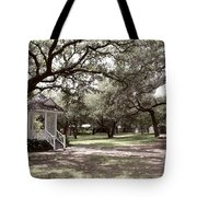 Austin Texas Southern Garden - Luther Fine Art Tote Bag by Luther  Fine  Art