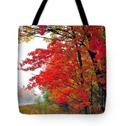 Autumn Along a Country Road Tote Bag by Terri Gostola