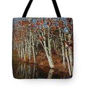 Autumn Blue Tote Bag by Karol Livote