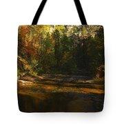 Autumn Colors By The Creek  Tote Bag by Saija  Lehtonen