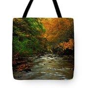 Autumn Creek Tote Bag by Melissa Petrey