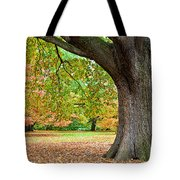 Autumn Tote Bag by Dave Bowman