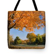 Autumn Dawn Tote Bag by Brian Jannsen