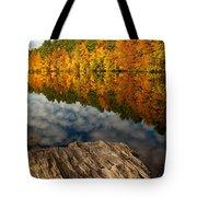 Autumn Day Tote Bag by Karol Livote