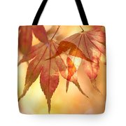 Autumn Glow Tote Bag by Anne Gilbert