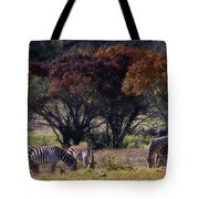 Autumn Grazing Tote Bag by Joan Carroll