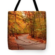 Autumn In Holmdel Park Tote Bag by Angie Tirado
