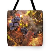 Autumn In The Vineyard Tote Bag by Michele Steffey