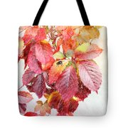 Autumn Leaves Tote Bag by Liane Wright