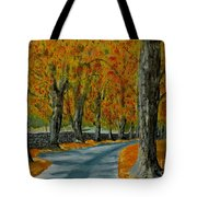 Autumn Pathway Tote Bag by Anthony Dunphy