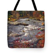 Autumn River Tote Bag by Joann Vitali