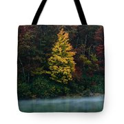 Autumn Splendor Tote Bag by Shane Holsclaw