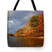 Autumn Storm Approaching Tote Bag by Michelle Wiarda
