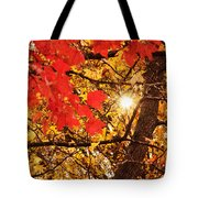 Autumn Sunrise Painterly Tote Bag by Andee Design