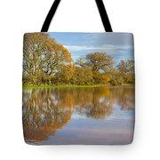 Autumn Trees Tote Bag by Sebastian Wasek