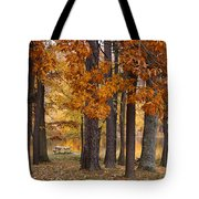 Autumn View Tote Bag by Sandy Keeton