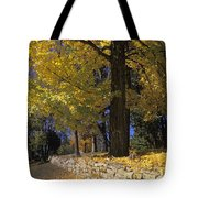 Autumn Wall - Fm000082 Tote Bag by Daniel Dempster