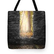 Autumn Within Long Pond Ironworks - Historical Ruins Tote Bag by Gary Heller