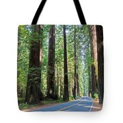 Avenue Of The Giants Tote Bag by Heidi Smith