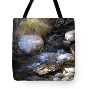 Babbling Brook Tote Bag by Barbara Snyder