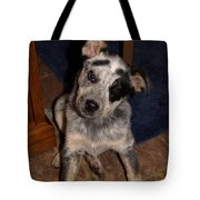 Baby Darla Tote Bag by James Peterson