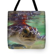 Baby Turtle Tote Bag by Carey Chen