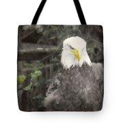 Bald Eagle Tote Bag by Dawn Gari